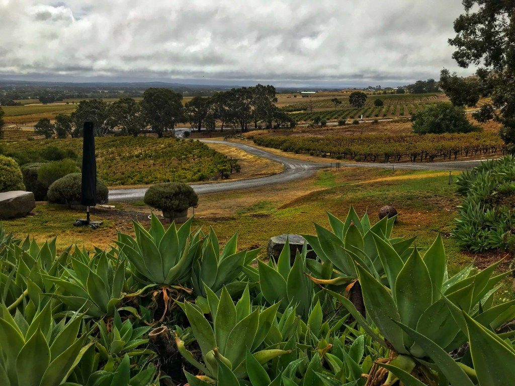 Barossa Valley on a rainy day as viewed from Bethany Vineyards
