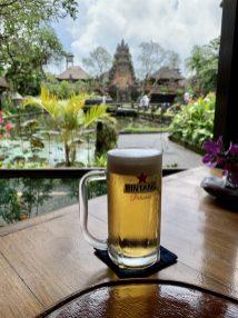 Bintang Beer in Ubud, Bali, Indonesia - image taken by DaniLew LLC with an iPhone XS