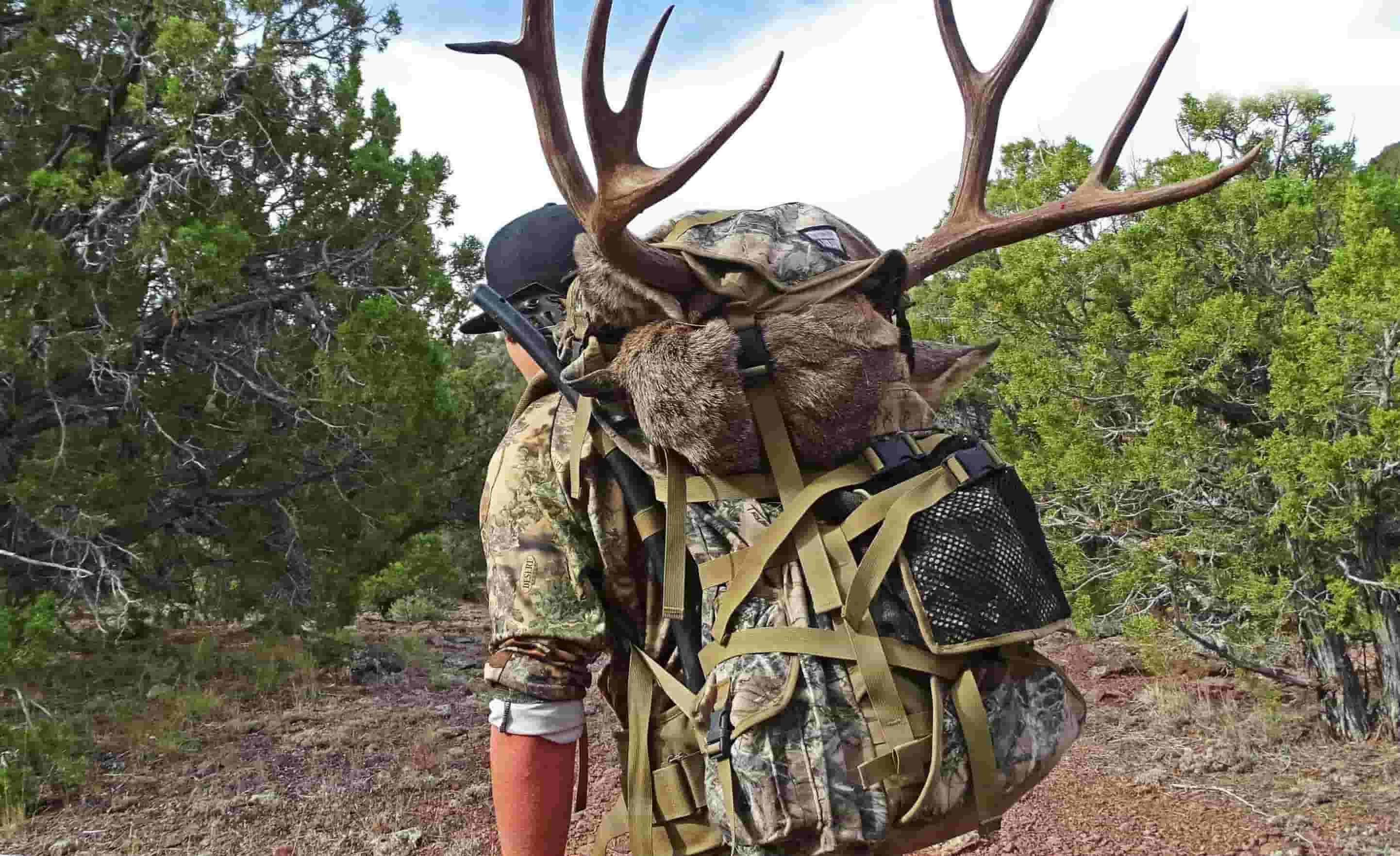 Best Hunting Pack for Hauling Meat in 2018 - Buying Guide & Top Reviews