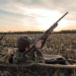 Best Layout Blind Reviews – Selfpatron