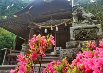 Roadside shrine, southern Honshu