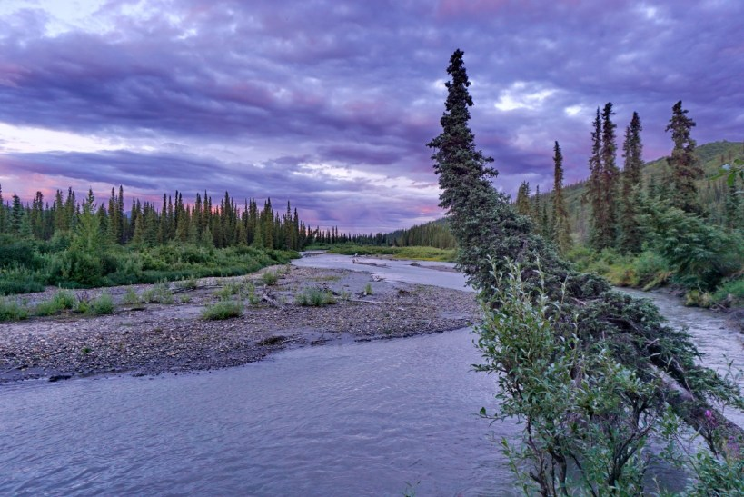 View from my kithchen on the Denali Highway