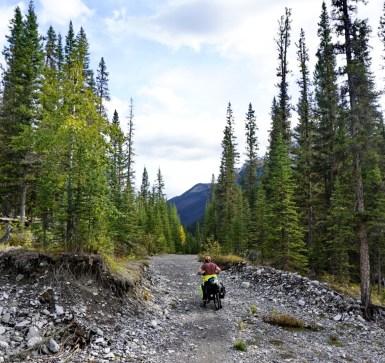 Steve on the trail outside Banff