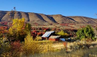 Near Cambridge, Idaho