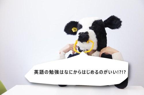 pic_77_4
