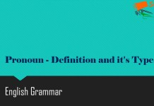 Pronoun - Definition and it's Types