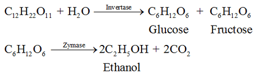 Preparation of Ethanol