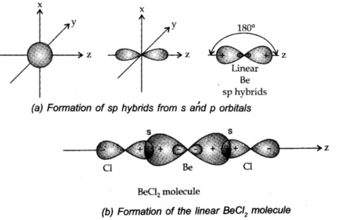sp hybridisation