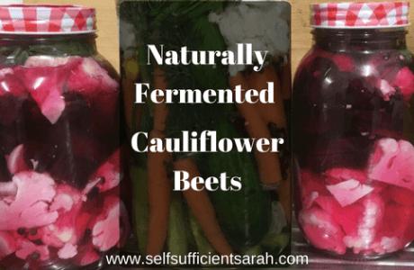 Naturally fermented cauliflower beets