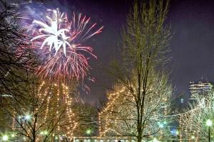 Family Fireworks Boston Comon