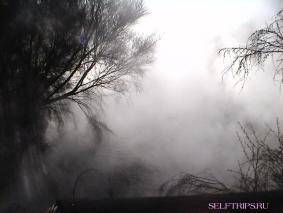 Долина гейзеров Роторуа