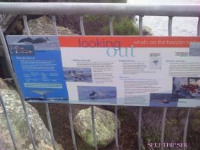 Тасмания: национальный парк Freycinet