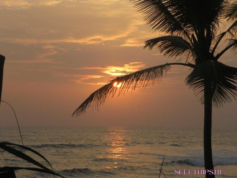 Шри-Ланка — Дели.