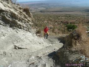 Озеро Найваша