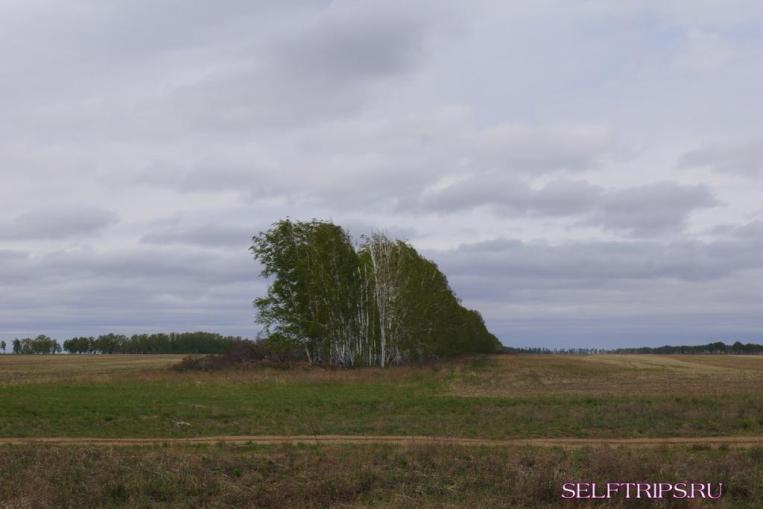 Новосибирск - Казахстан.