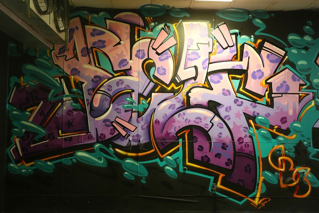 self selfuno graffiti downtown los angeles dtla container yard piece letters leopard print december 2014