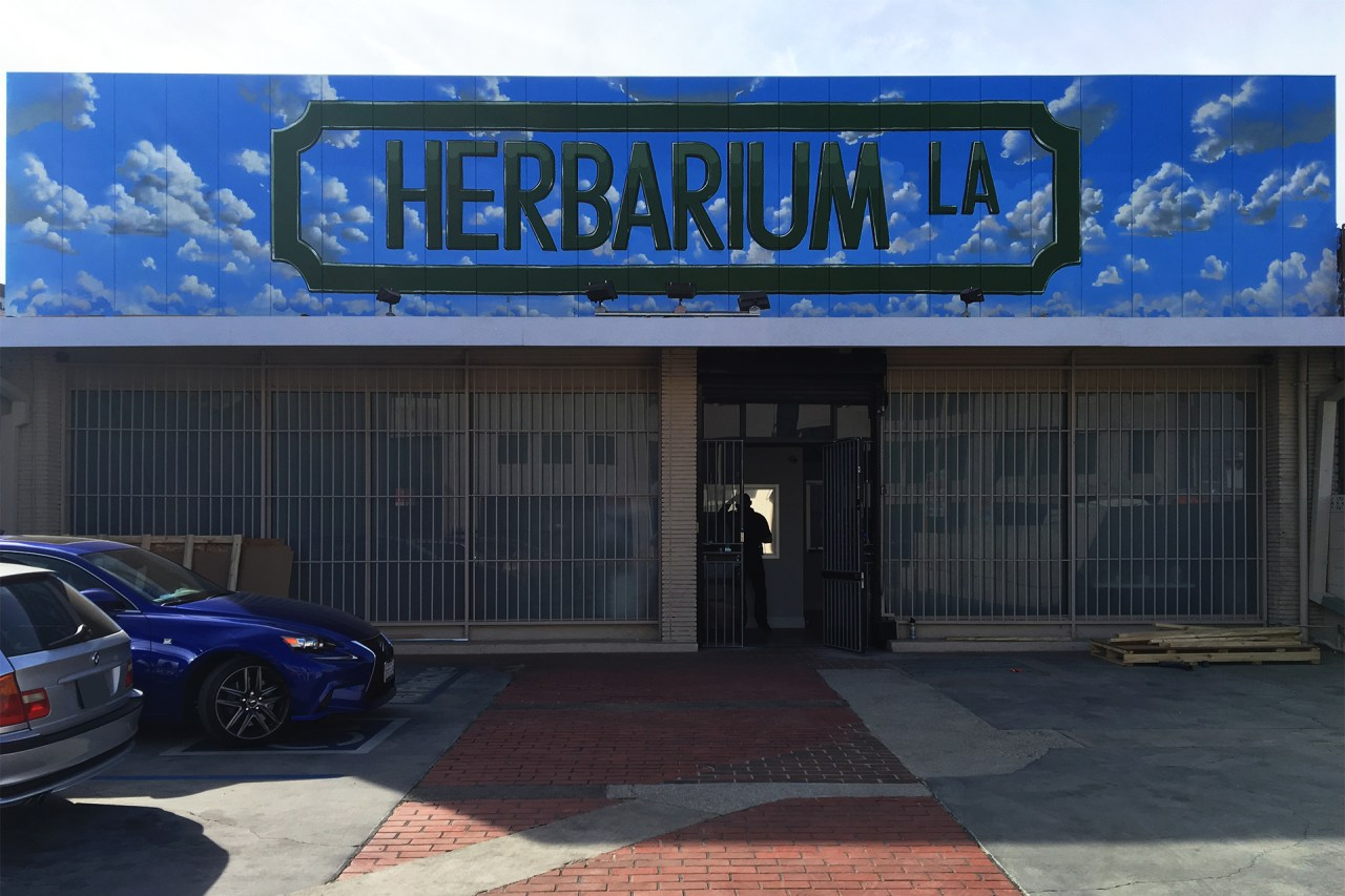 self selfuno sign paint handpaint herbarium labrea los angeles february 2016