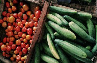 Хранение огурцов и помидоров