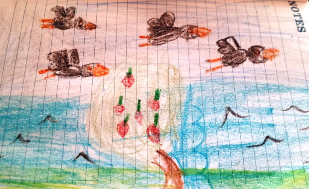 This is a picture of a beach with a slope/drop and in front is an apple tree with blackbirds flying over it