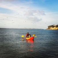 Kayaking at St Heliers