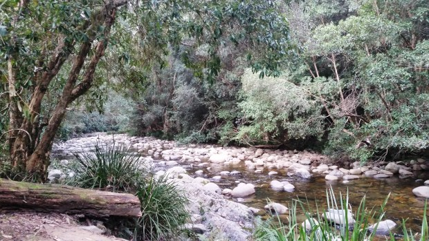 Gloucester River Campground