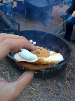 Delicious cookie smores in the evening.