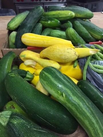 photo of food pantry donation garden zucchini