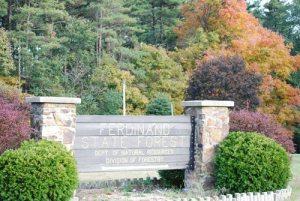 Ferdinand IN State Forest