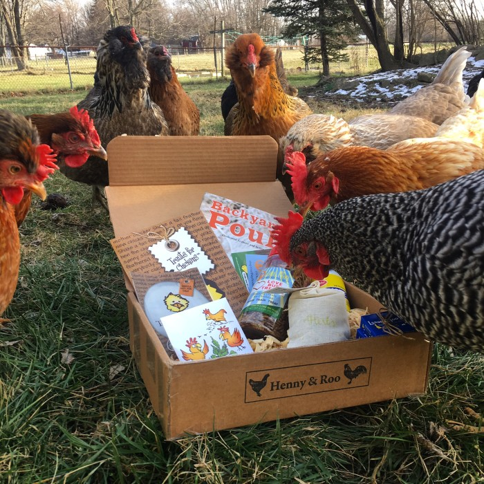 chickens enjoying their henny and roo box