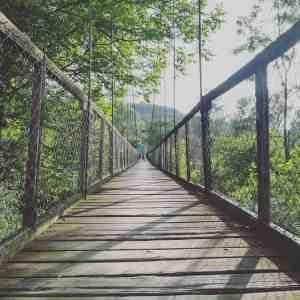 bridge of education