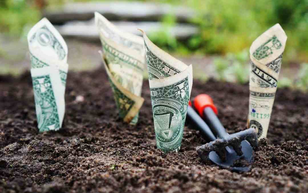 4 Best High-Interest Savings Accounts for 2019