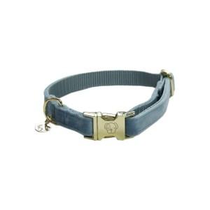 Collier chien Velvet Bleu Clair Kentucky Horsewear Dogwear
