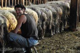 la grange à ludo-80
