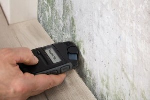 Inspired Homes inspection-mold-300x200 Home Inspections in Gallatin and Hendersonville TN Buying a Home  home inspections Home Inspection