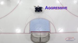 Goalie at Aggressive depth