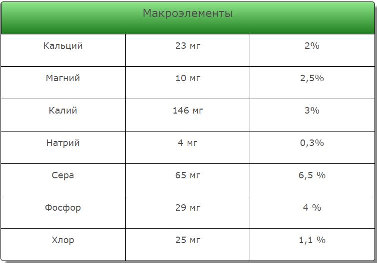 Полезные вещества Лука «Шеба» F1 - 3