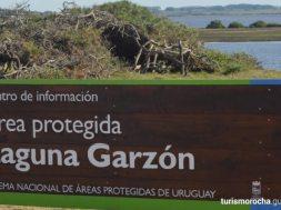 areas-protegidas