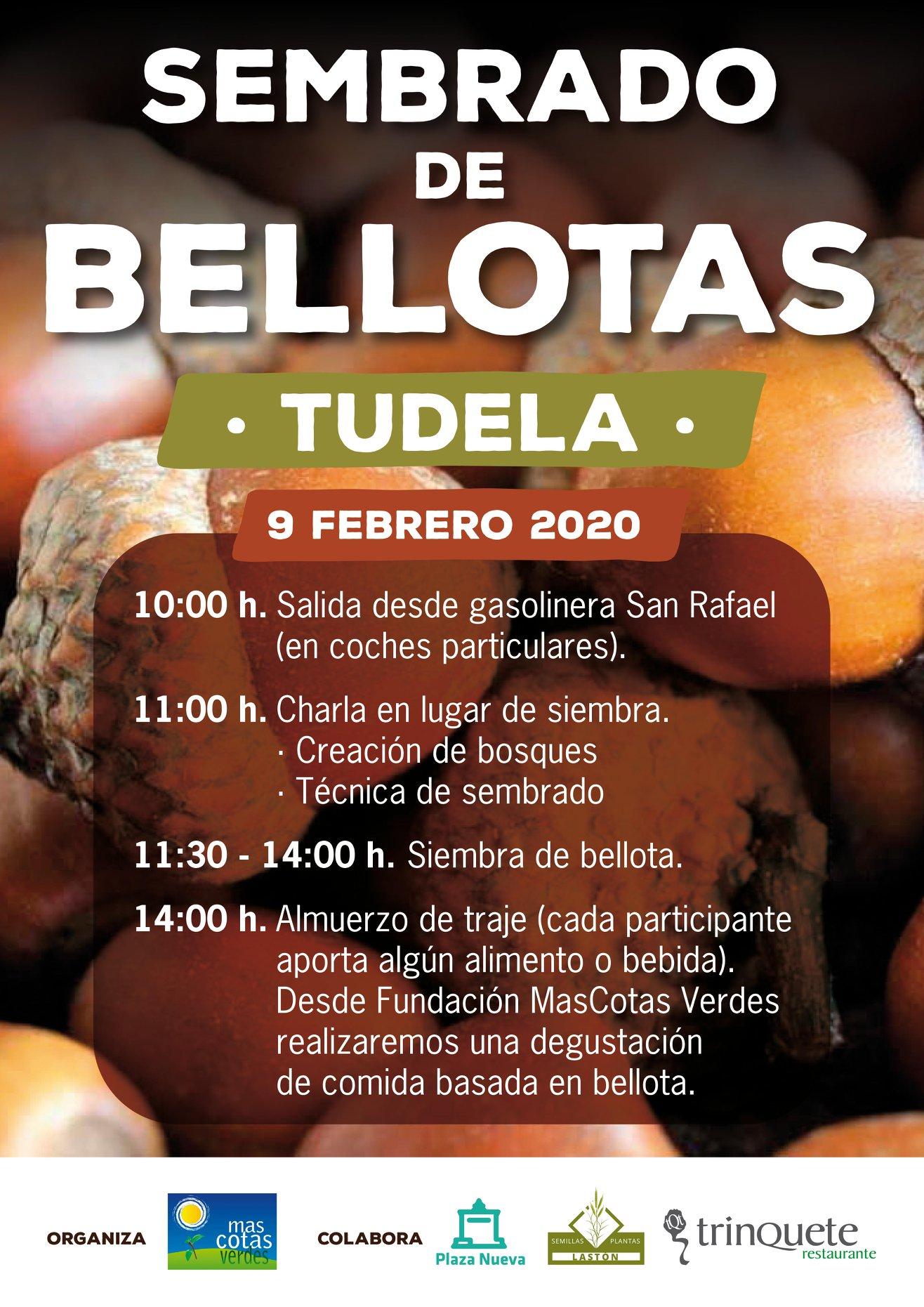 SEMBRADO BELLOTAS ENERO 2020