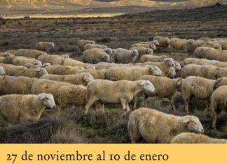 EXPOSICIÓN FOTOGRÁFICA TIERRA DE BARDENAS