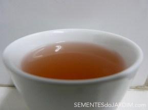 Chá de Shiso - Perilla frutescens