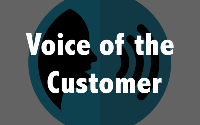 Now You Can Finally Understand the Voice of the Customer