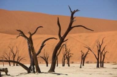 semestafakta-Namib-Naukluft Park