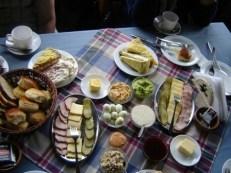 semestafakta-chilean once2