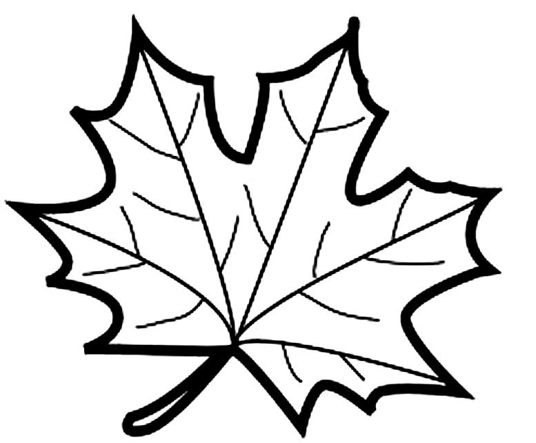 раскраска осень листья раскраска осенние листья