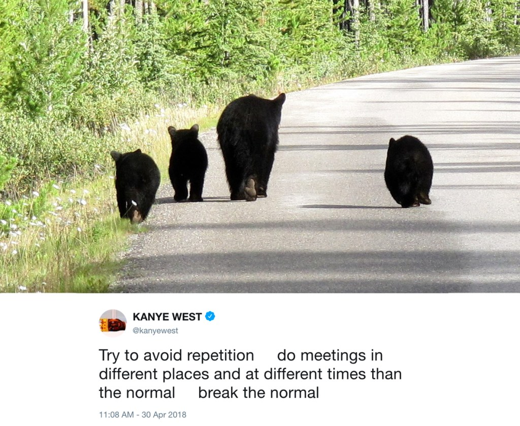try to avoid repetition - kanye west tweets with photos of bears