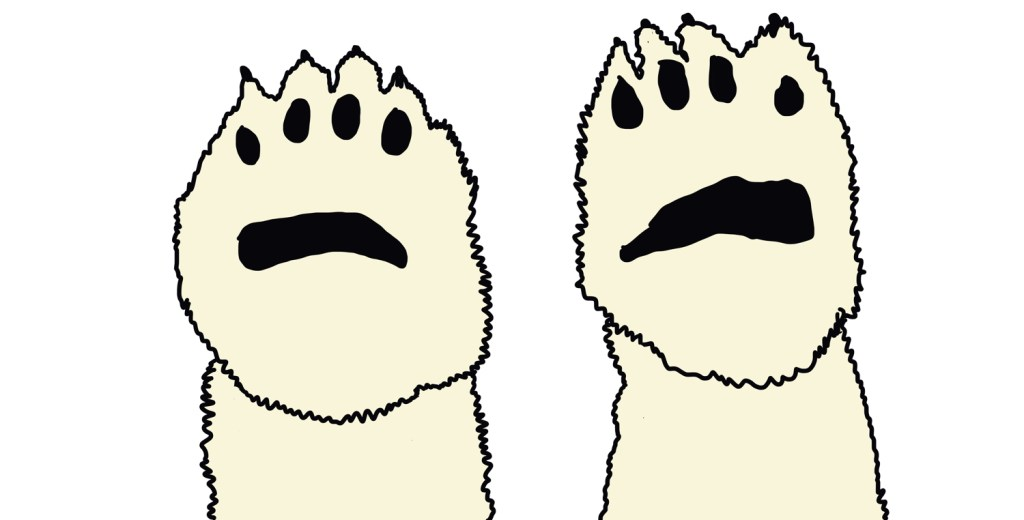polar bear paws drawing