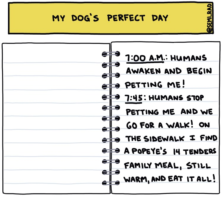 Semi-Rad drawing of a dog's diary