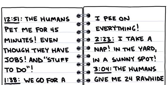 semi-rad drawing of dog's diary