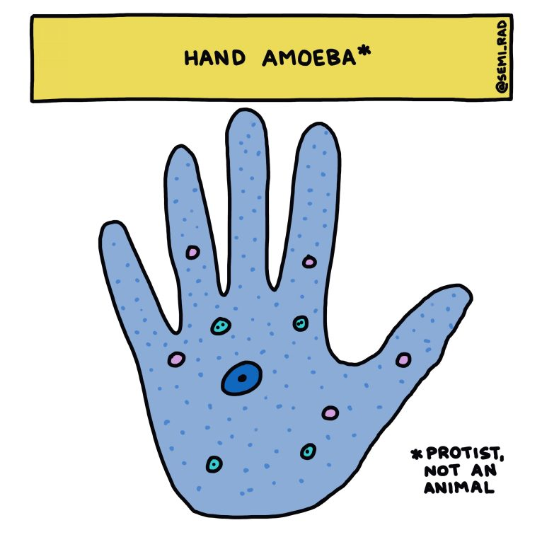 semi-rad hand amoeba