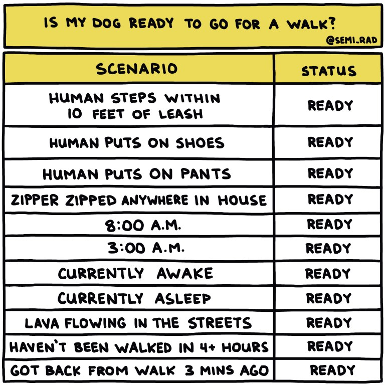 semi-rad chart: is my dog ready to go for a walk?
